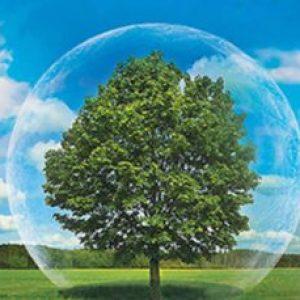 Как сохранить окружающую среду