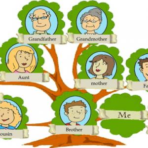 Как разобраться в секретах своей фамилии и происхождения